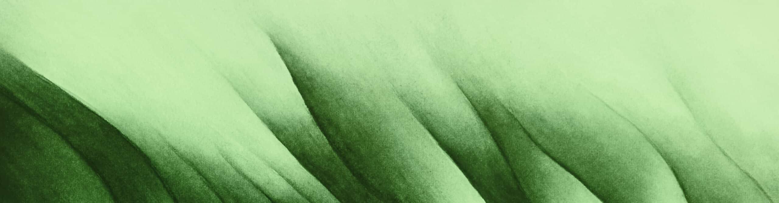Praxis Perspektive bietet Hypnose in Freiburg bei psychosomatischen Beschwerden